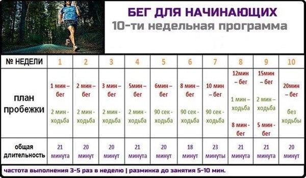бег для начинающих   www.financewin.ru